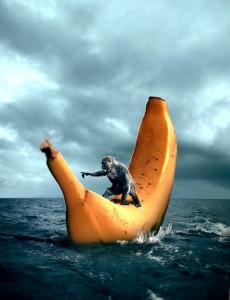 Sailing Banana
